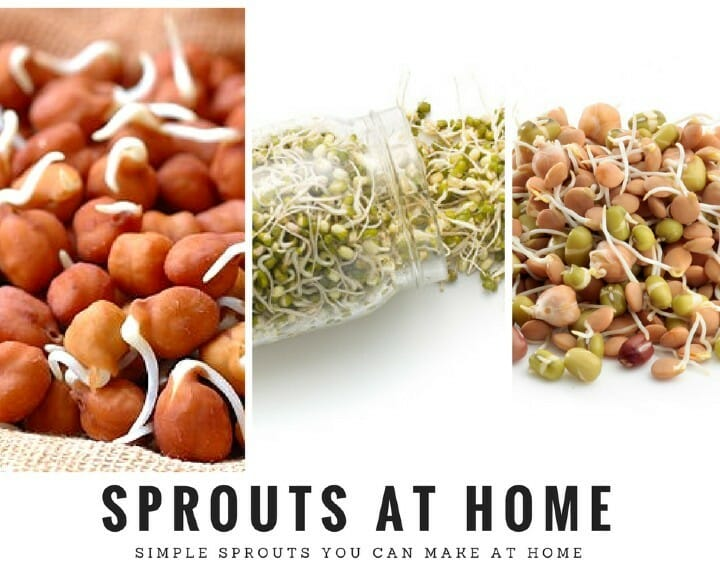 Sprouts for Low Carb Diet
