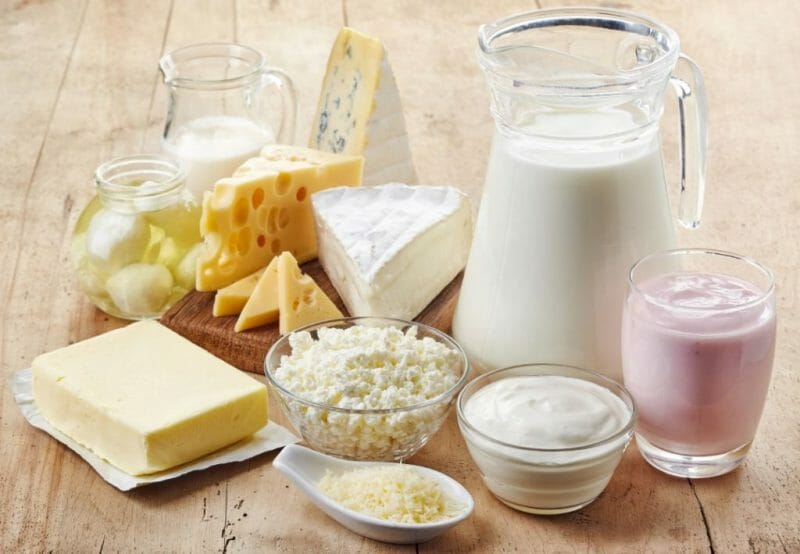 Dairy Proteins for Low Carb Vegetarian Diet